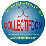 cropped-logo-rond-collectifdom-couleur-2013.jpg